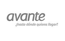 IT Consulting Digital Marketing Plans Avante