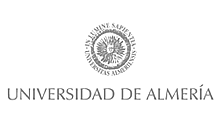 IT Consulting Universidad de Almer�a