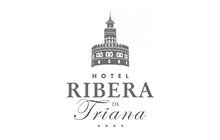 Design and Development Web Portals and Intranets Hotel Ribera de Triana